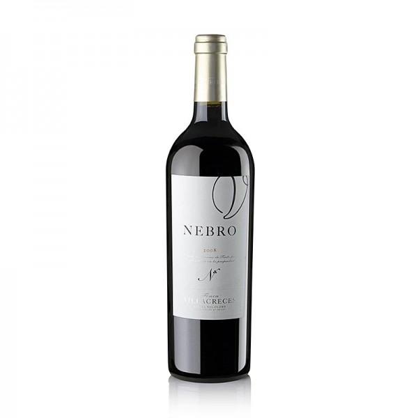 Finca Villacreces - 2008er Nebro Tempranillo Barrique 14.5% vol. Villacreces 94 Penin